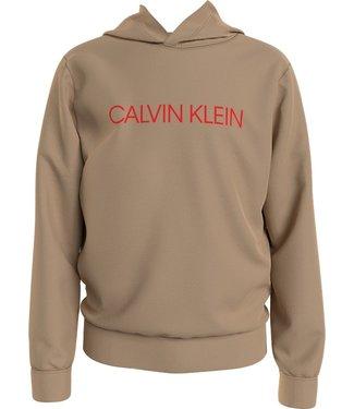 Calvin Klein INSTITUTIONAL LOGO HOODIE STONE
