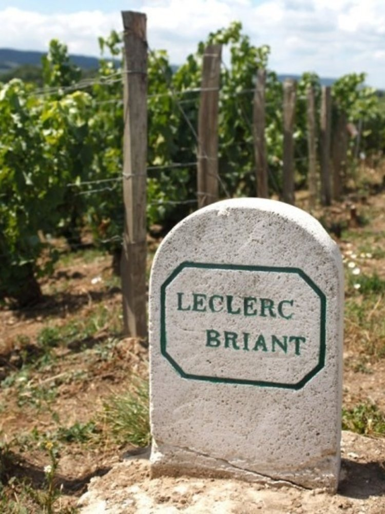 Leclerc Briant Les Basses Priéres 1er Cru Millésime Brut Zéro 2014