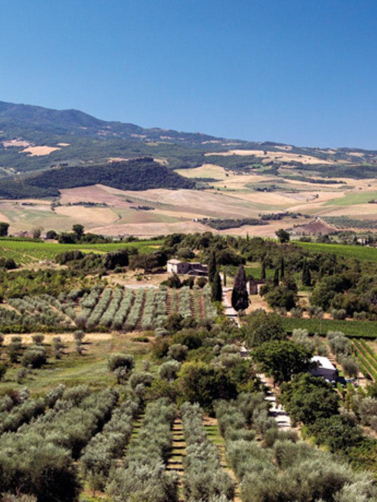 Tenuta di Sesta Camponovo - Rosso Toscane 2018