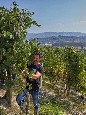 Negretti Langhe Chardonnay 2016