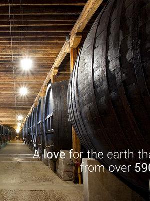 Giol Chardonnay zonder toegevoegd sulfiet 2020