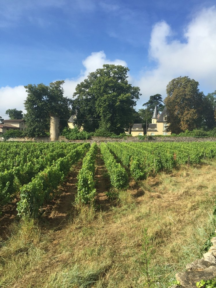 Chateau Dudon Sauternes 2019 0,5L