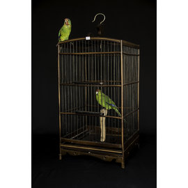 De Wonderkamer Wooden birdcage with two parakeets