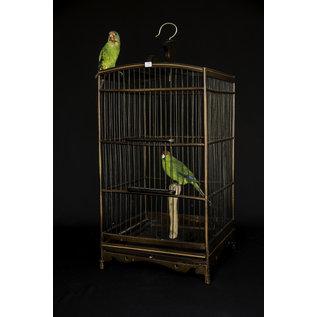 De Wonderkamer Wooden birdcage with two parakeets