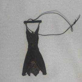 De Wonderkamer Horseshoe bat (Rhinolophus lepidus)