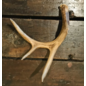 De Wonderkamer Antler (small)