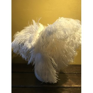 De Wonderkamer Struisvogelveer (wit)