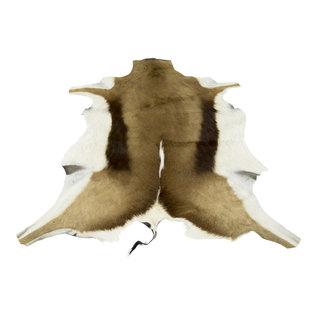 De Wonderkamer Fur springbok