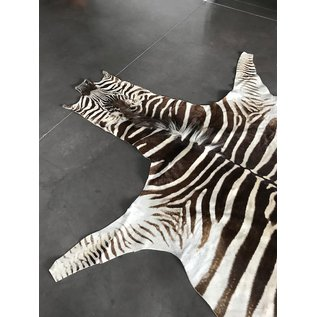 De Wonderkamer Vacht Zebra (Equus quagga)