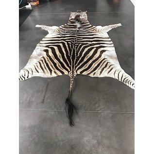 De Wonderkamer Fur zebra  (Equus quagga)