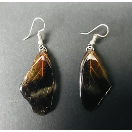 De Wonderkamer jewelery made of lacquered butterfly wings