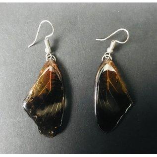 De Wonderkamer  jewelery made of lacquered butterfly wings