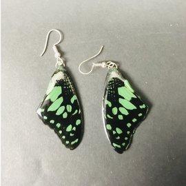 De Wonderkamer bijoux en ailes de papillon laquées