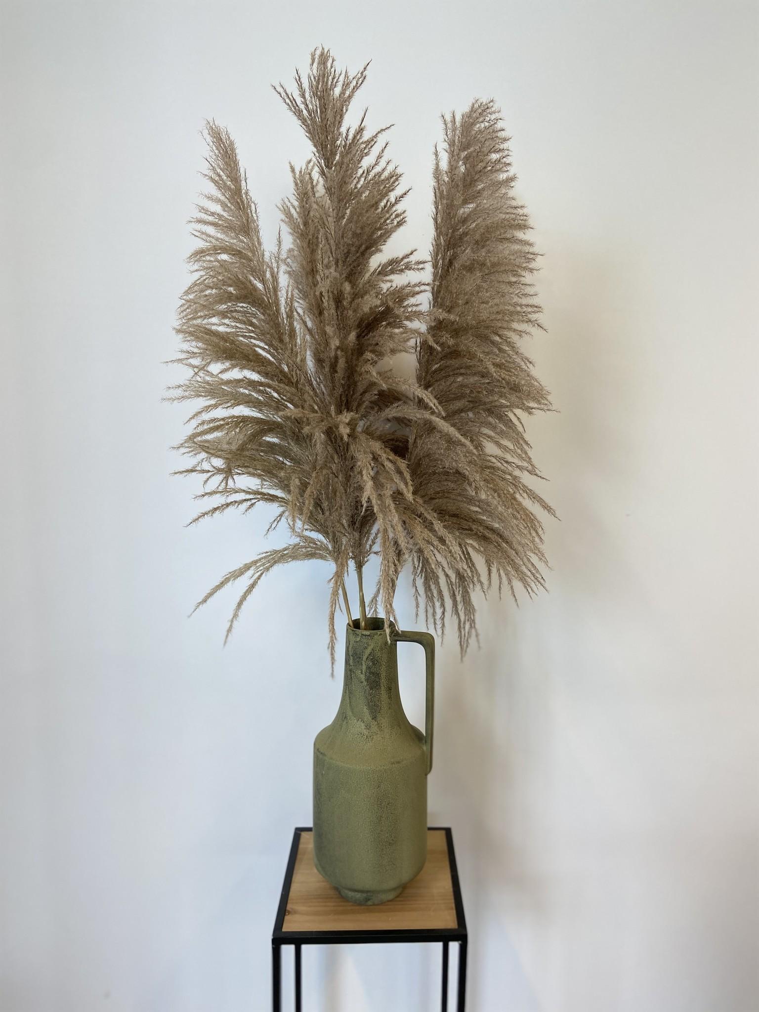 Dried Cortaderia Naturel 110 cm-1