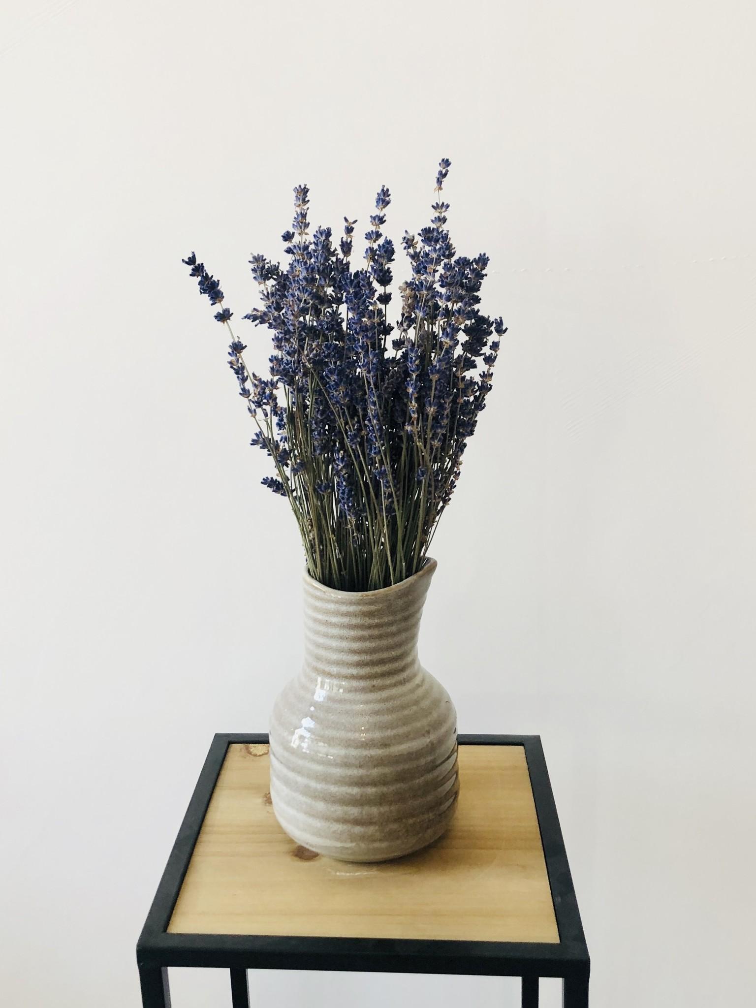 Lavendel - blauw gedroogd-2