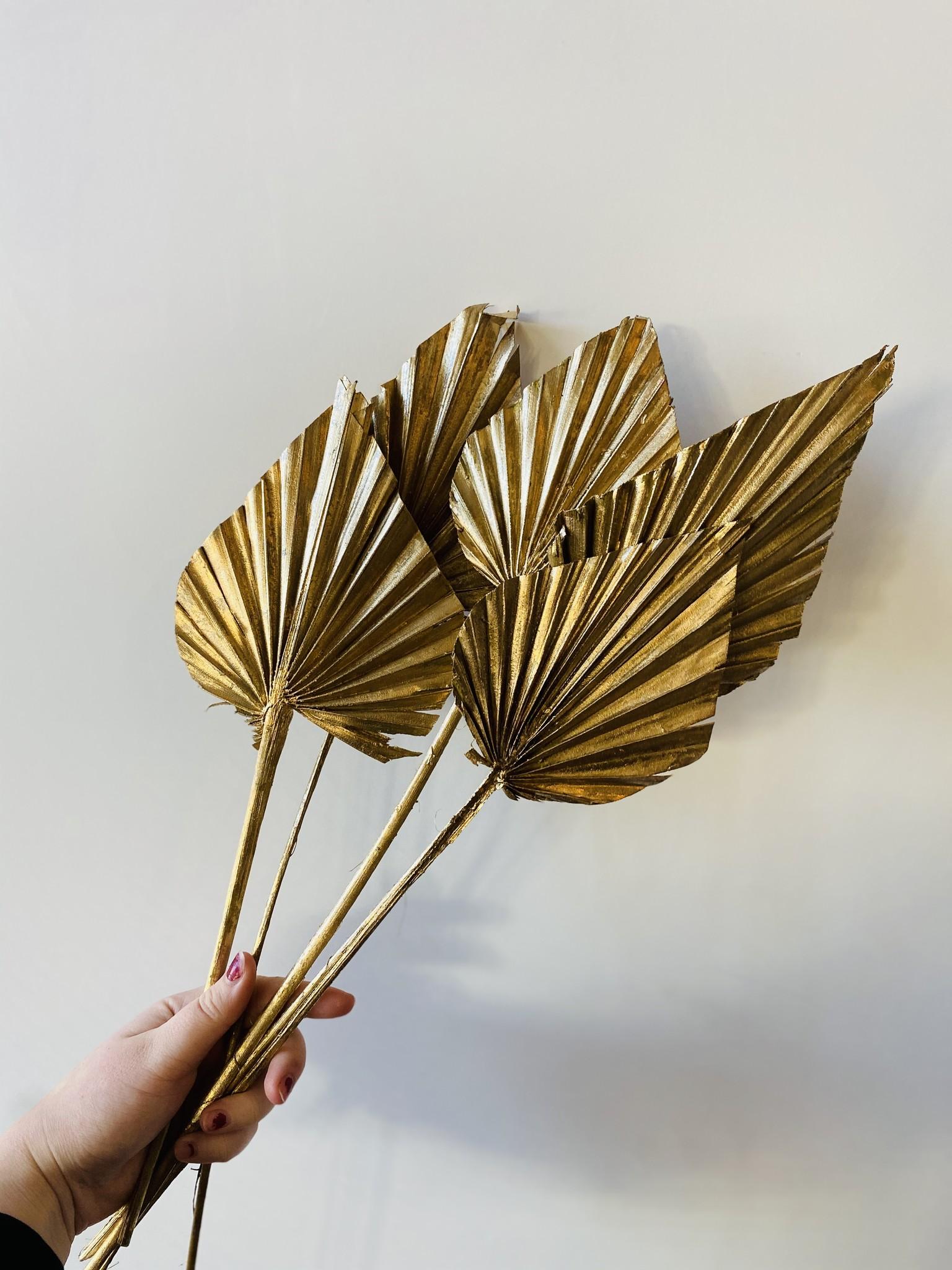 Palm Spear Gold - 5 stuks-1