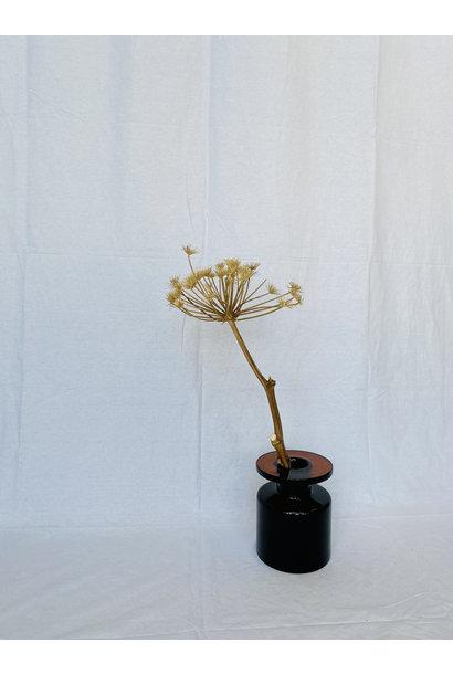 Berenklauw Naturel 70 cm