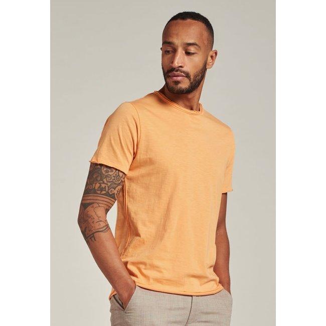 Dstrezzed Basic T-Shirt 202274 PUMPKIN