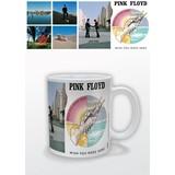 Pink Floyd Wish You Were Here Mok