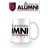 Harry Potter Gryffindor Alumni Mok