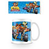Crash Team Racing Race Mok