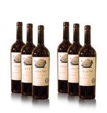 Merk Vellino Vellino Saperavi Qvevri, Red-dry wine