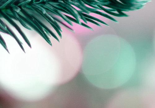 December Cadeaus tot €25