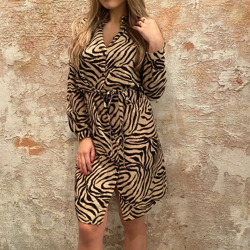 Sisters Point Bamboo/Zebra dress