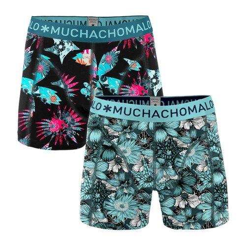 Muchachomalo 2 pack Xplant 04