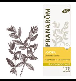 Jojoba olie - Simmondsia chinensis BIO (ECO)