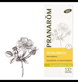 Muskusroos olie - Rosa rubiginosa BIO 50 ml pranarom