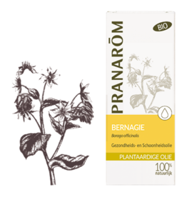 Bernagie olie - Borago officinalis BIO 50 ml pranarom