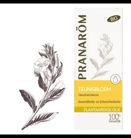 Teunisbloemolie - Oenothera biennis BIO 50 ml pranarom