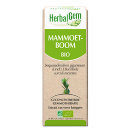 Gemmotherapie Mammoetboom 50ml Herbalgem