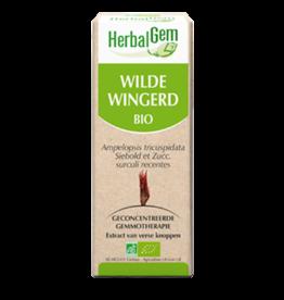 Gemmotherapie Wilde Wingerd 15ml