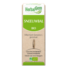 Gemmotherapie Sneeuwbal 15ml Herbalgem