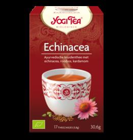Echinacea Yogi tea