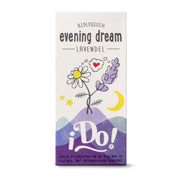 Evening Dream, I do