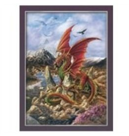 Poster Fire Dragon