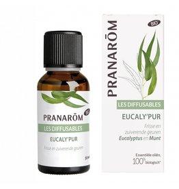 Verstuivingsmix Eucaly'pur Pranarom