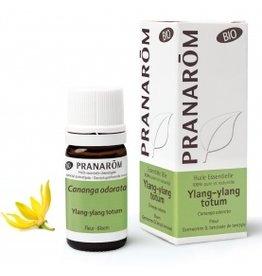 Ylang-ylang totum Cananga odorata BIO Pranarom