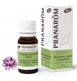 Rozengeranium cv bourbon Pelargonium graveolens - type bourbon BIO pranarom