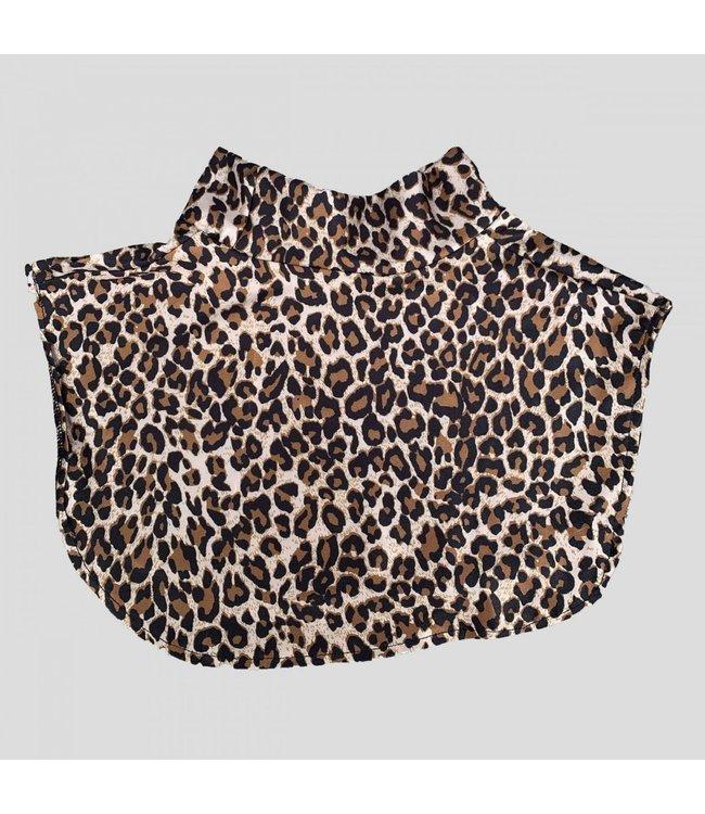PiNNED by K Kraagje coll  leopard