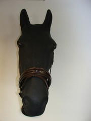 HB Ruitersport Noseband lacquer extra wide