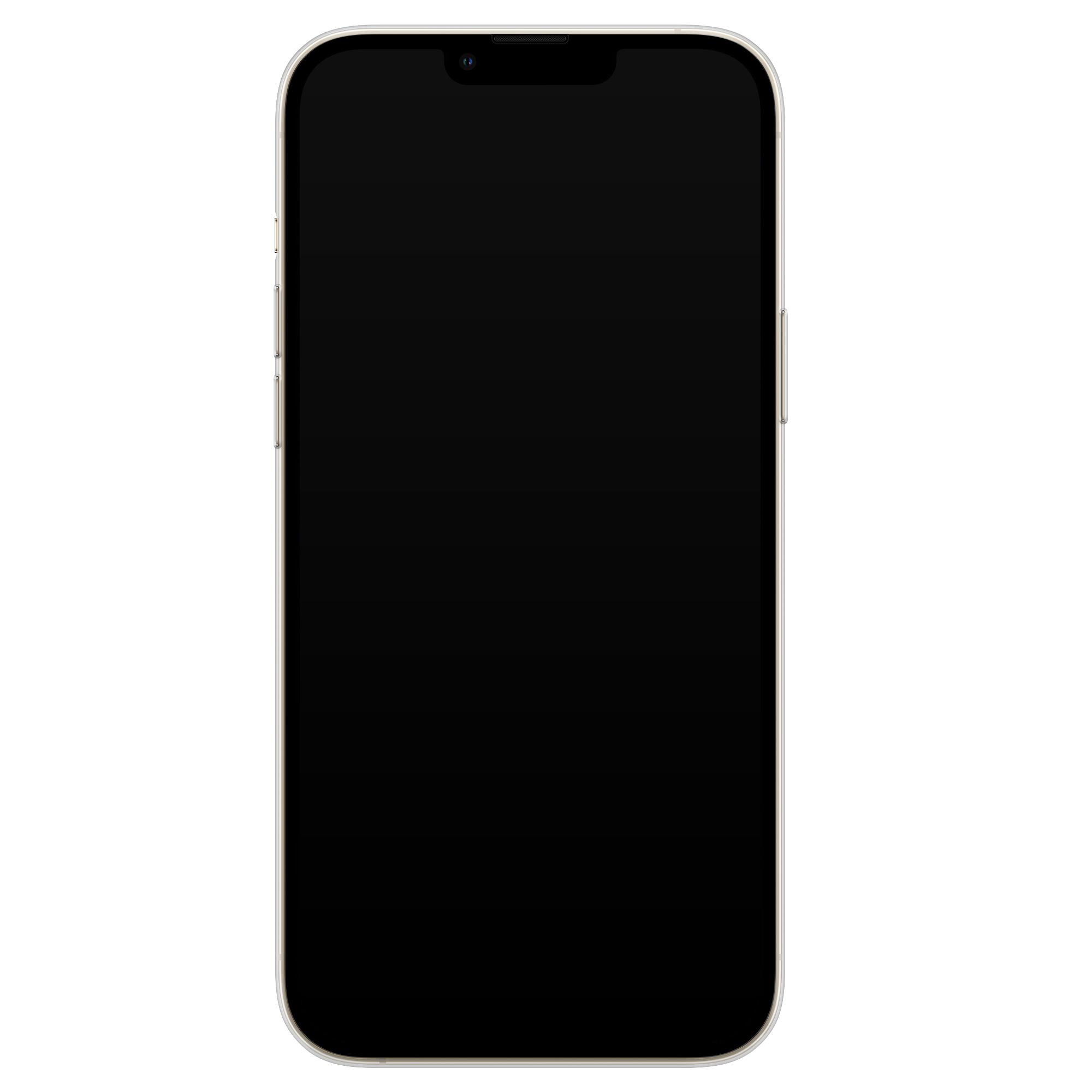 Leuke Telefoonhoesjes iPhone 13 Pro Max siliconen hoesje - Luipaard mint