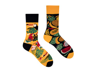 Tropical by Spox Sox