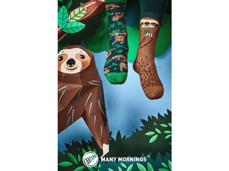Many Mornings Sloth life by Many Mornings