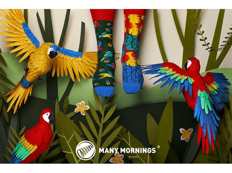Many Mornings Paradise Parrot by Many Mornings