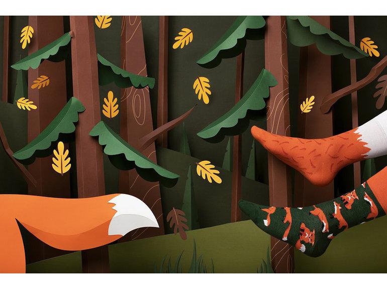 Many Mornings The Red Fox by Many Mornings