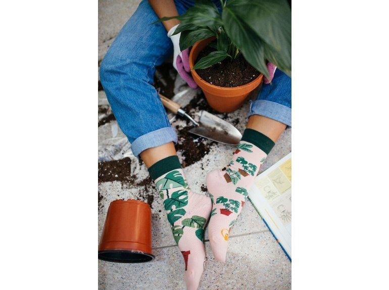 Many Mornings Plant Lover by Many Mornings